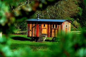 Comment construire une cabane : la bonne méthode à suivre