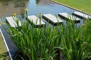 Qui contacter pour un bassin aquatique sur mesure en Bretagne ?
